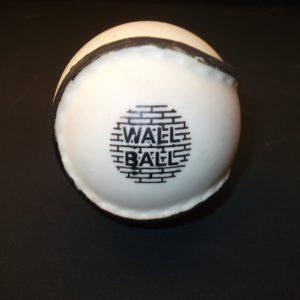 Wall Ball Sliotar